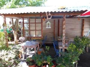 The New Blue Orange - Outside Back Garden