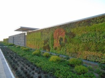 Cavalli Living Wall