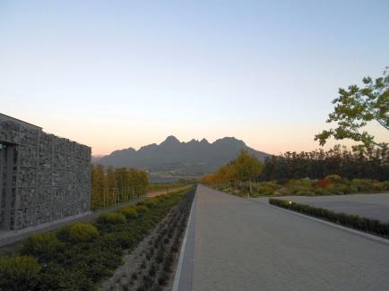 Cavalli Views